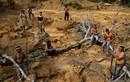 """Thổ dân Brazil """"lộ diện"""", thề sống chết bảo vệ rừng Amazon"""
