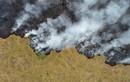 """Cháy rừng Amazon: Cả thế giới """"nín thở"""" theo dõi"""