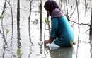 Vì sao mưa lũ bất thường gia tăng liên tiếp tại châu Á?