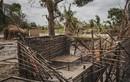 Nhóm liên quan tới IS thảm sát dã man 50 người tại Mozambique