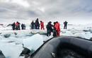 Tận mục cuộc sống của các nhà nghiên cứu ở Nam Cực