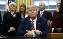 Ông Trump vẫn có thể vượt qua ải luận tội lần thứ 2