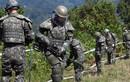 Tướng Hàn Quốc bị tước quyền sau vụ người Triều Tiên vượt biên
