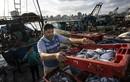 Cận cảnh cuộc sống ngư dân Gaza sau lệnh ngừng bắn Israel - Hamas