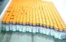 UAE tiêm vắc xin Sinopharm cho trẻ từ 3-17 tuổi