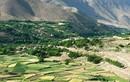 Taliban tuyên bố chiếm được thành trì chống đối cuối cùng ở Afghanistan