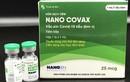 2 Hội đồng họp sắp xem xét tiếp tục đánh giá vắc xin Nano Covax