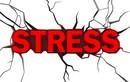 Không kiểm tra email khi ở nhà - cách giảm stress tốt nhất