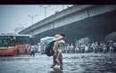 Những bức ảnh lay động triệu trái tim trong ngày Hà Nội ngập