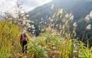 Phượt thủ Việt tiết lộ những pha thót tim khi leo núi