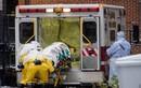 WHO cảnh báo về các ca Ebola mới tại Mali
