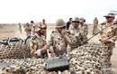 Quân đội Iran tập trận rầm rộ ngay sát biên giới