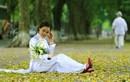 Đẹp nao lòng Hà Nội những ngày giao mùa sang thu