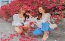 Muốn chụp hoa giấy đẹp lịm tim tại Hà Nội giới trẻ nên đến đâu?