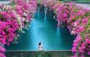 """Thêm """"thánh địa check-in"""" hoa giấy auto có ảnh đẹp tại Hà thành"""