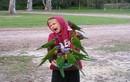 Kinh hoàng với những pha chim tấn công người