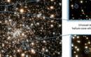 24 ngôi sao kỳ lạ được phát hiện qua kính viễn vọng Hubble