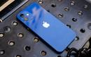 Thêm lý do khiến người dùng hết muốn mua iPhone 12