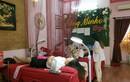Bị đình chỉ hoạt động, Spa Hồng Minkon vẫn âm thầm nhận khách?