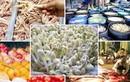 Điểm danh thực phẩm ngậm hóa chất đầu độc người Việt