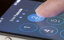 Apple làm ngơ với lỗi nghiêm trọng của iOS 13