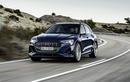 """Audi E-Tron tại Việt Nam có thêm phiên bản """"nóng bỏng"""" hơn"""