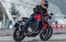 """""""Quỷ nhỏ"""" Ducati Monster 821 2021 đã giảm cân thành công"""