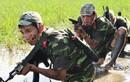 Mạng quốc tế ca ngợi nghệ thuật chiến đấu Đặc công Việt Nam