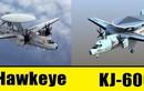 """Trung Quốc khẳng định KJ-600 sẽ khiến F-22, F-35 """"hiện hình"""""""