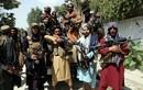 Màn thanh trừng của các tay súng Taliban tại Afghanistan bắt đầu