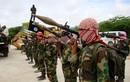 Al-Qaeda từng có kế hoạch tấn công Nga