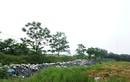 Rác thải thủy tinh gây ô nhiễm ở Vĩnh Phúc: Công an vào cuộc