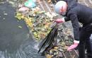 Trời lạnh cóng, công nhân vẫn miệt mài móc rác trên sông Tô Lịch