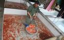 Cận cảnh làng cá chép tất bật với Tết ông Công, ông Táo