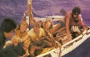Cá voi sát thủ tấn công, cả nhà trôi dạt 6 tuần trên biển