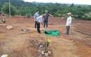 Chủ đầu tư dự án thừa nhận đã san ủi lăng mộ vợ vua nhà Nguyễn