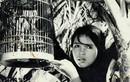 Những bộ phim làm nên thương hiệu của Hãng phim truyện Việt Nam
