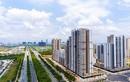 Dự án New City Thủ Thiêm của công ty Thuận Việt: Thiết kế đã bị thay đổi ra sao?
