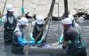 GĐ Sở Xây dựng phát biểu thiếu căn cứ về công nghệ làm sạch sông Tô Lịch?