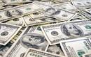 Tỷ giá USD, Euro ngày 17/8: Kinh tế khó khăn, USD suy yếu