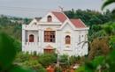 Ảnh: Biệt thự xây trái phép của gia đình Phó ban Nội chính tỉnh ủy