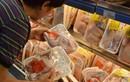 """""""Sốc"""" với giá gà rẻ như rau, chỉ 8.000 đồng/kg"""