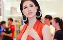 Trang Trần: 'Mong các anti-fan ngày một đông để tôi đi nhặt tiền'