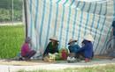 Ông Chung bị bắt, vụ bãi rác Nam Sơn bỏ ngỏ, dân lại chặn xe rác