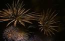 Mãn nhãn với màn trình diễn pháo hoa rực sáng Phú Thọ mừng ngày Giỗ Tổ