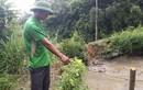 Thông tin mới rợn người về vụ thảm sát ở Lào Cai