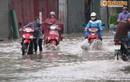 Chủ tịch UBND TP Hà Nội ra công điện khẩn ứng phó siêu bão Mangkhut