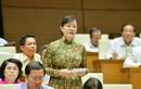 ĐBQH tranh luận nảy lửa nhà hát giao hưởng 1.500 tỷ ở Thủ Thiêm