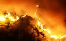 Khởi tố đối tượng đốt rác gây cháy rừng ở Hà Tĩnh