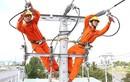 """Covid-19: Malaysia giảm giá điện cho dân, Tập đoàn Điện lực Việt Nam có """"học theo""""?"""